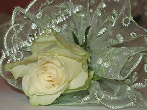 Свадебное кружево для Вашего торжества